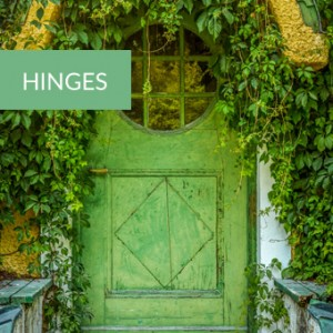 rustic hinges